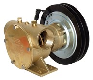 "1½"" bronze pump, <b>200-size</b>, foot-mounted with BSP threaded ports"