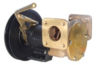 "1½"" bronze pump, <b>200-size</b>, foot mounted with flanged ports"