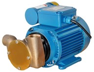 "Utility 20' ¾"" Self-Priming Flexible Impeller Pump"