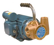 "Utility 40' 1"" Self-Priming Flexible Impeller Pump"