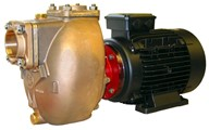 "1½"" Bronze Self-priming Centrifugal Motor Pump Unit"