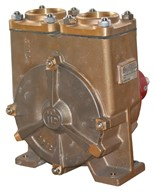 "2"" Bronze Regenerative Turbine Pump"