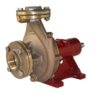 "2"" Bronze End Suction (Non-self-priming) Centrifugal Pump"